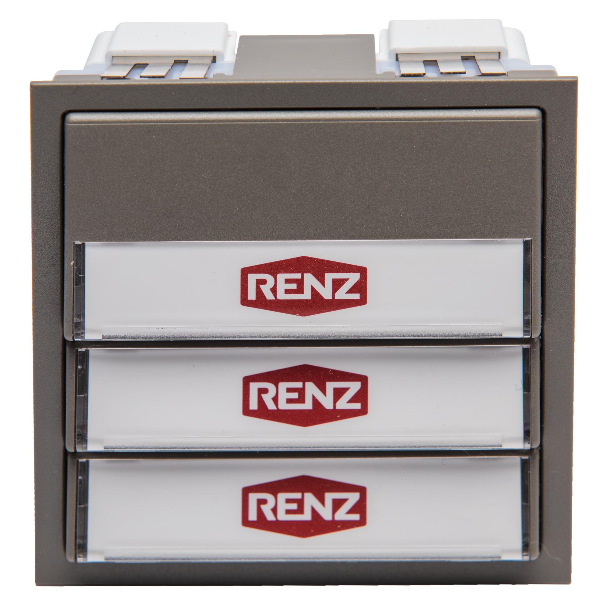 Renz Tastenmodul mit 3 Wipptaster, Farbe: grau